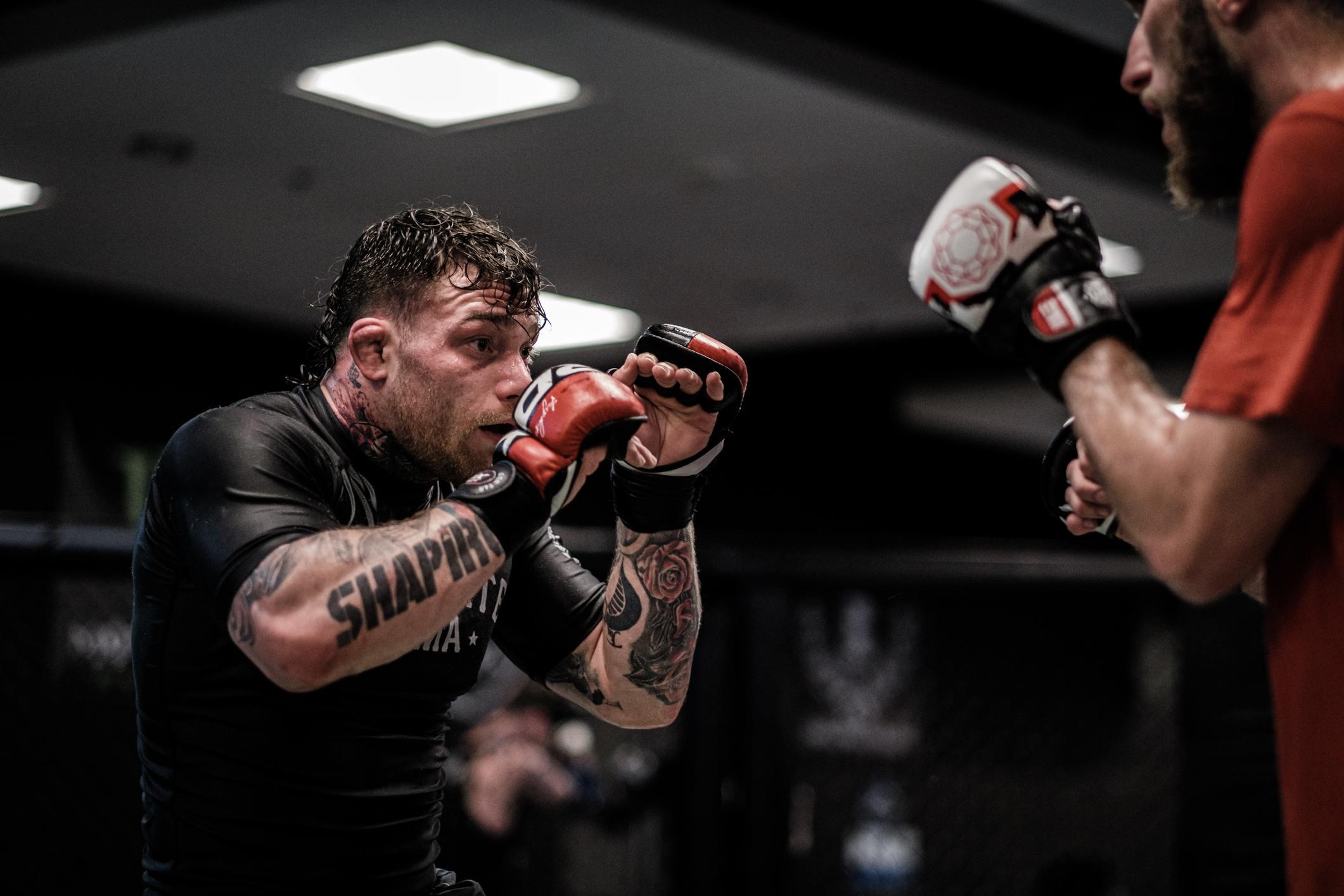 MMA fighter instincts, training